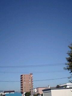 いい天気じゃ〜